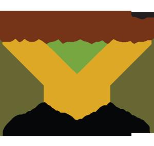 Mosaics Pakistan